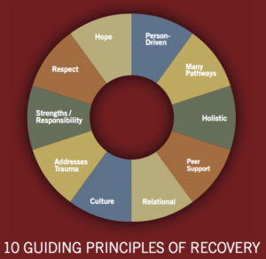 10 Guiding Principles of Recovery